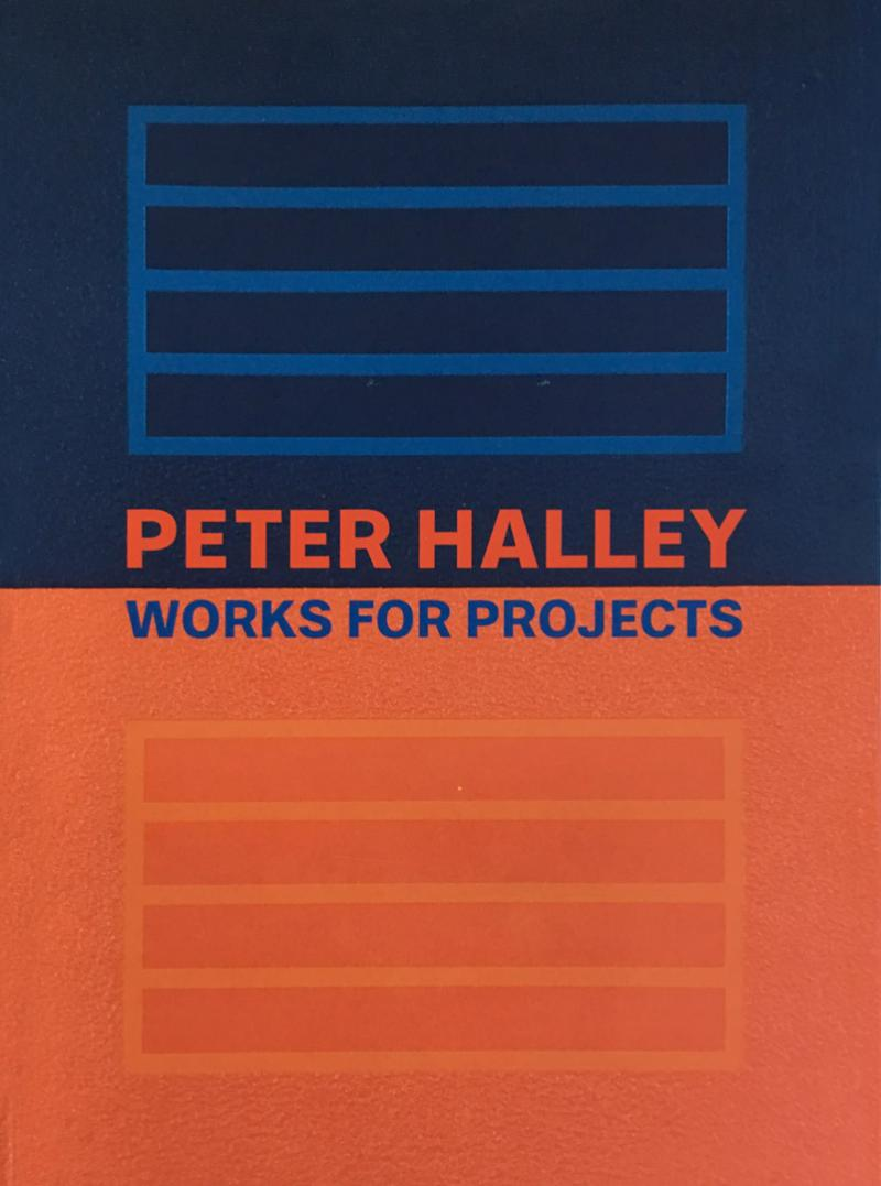 PETER HALLEY / Works for Projects / In Arco Book / Torino 2008